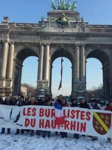 Bruxelles: Nous y étions...Mais d'autres combats sont à venir.... dans ACTUALITE SYNDICALE 545259_10200465523948949_821410388_n-225x300