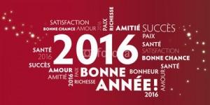 Bonne-année-2016-et-texte-png-Joyeux-Noël-bannière-images-2